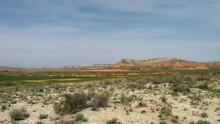 Belchite - El Planerón erreserba ornitologikoa irudia