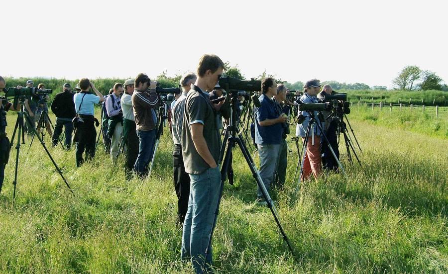 Euskal Batzorde Ornitologikoa sortu da